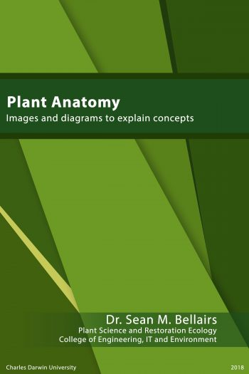 Cover image for Plant Anatomy and Physiology